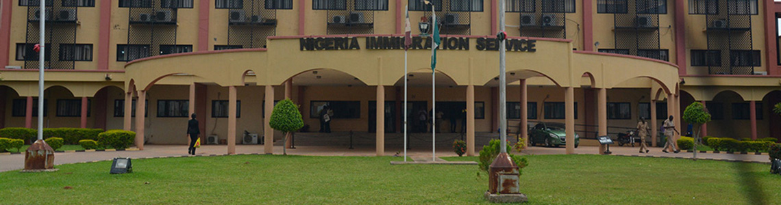 nigeria standard epassport application form